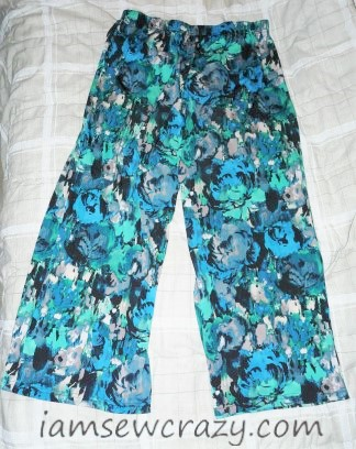 the pants that I turned into a swimsuit