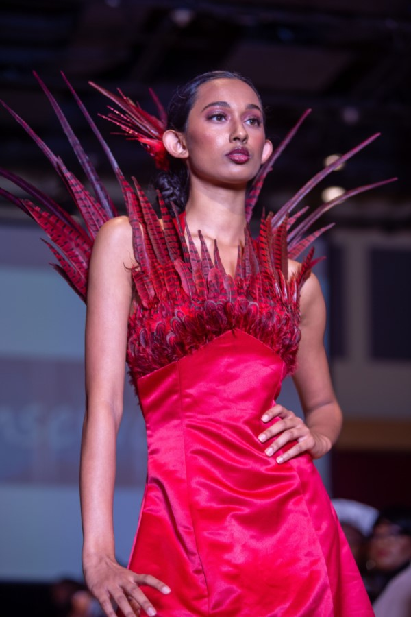 phoenix dress with red feathers