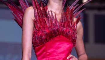 red phoenix dress with feathers applied to look like flames