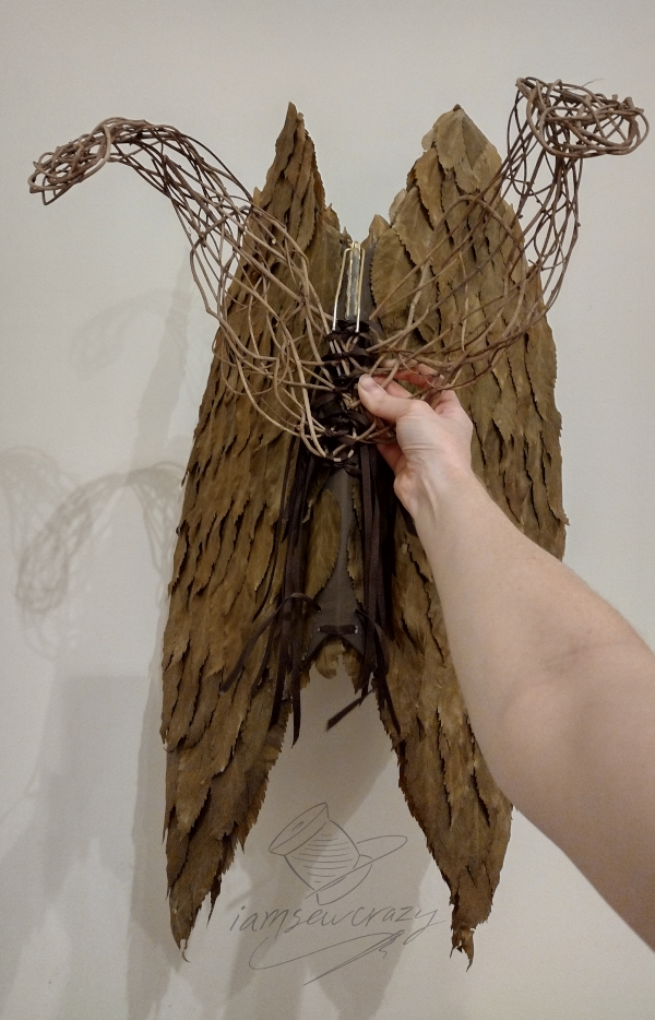 fairy wings back view